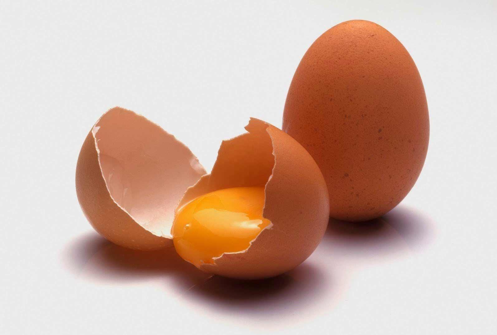 No tires la cáscara del huevo! - Colón Portal 2018